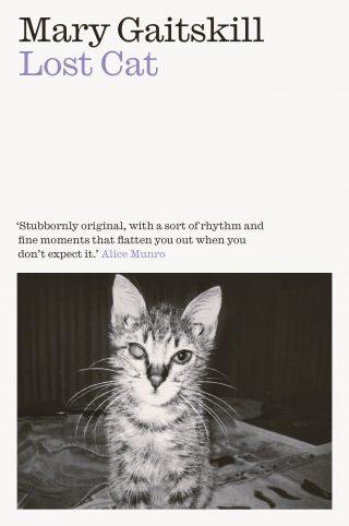 Lost Cat | Mary Gaitskill